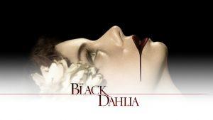 noir - Black Dahlia